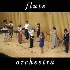フルートオーケストラコース画像