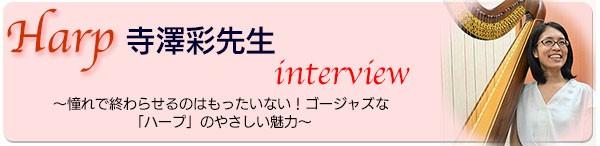 寺澤先生インタビュー