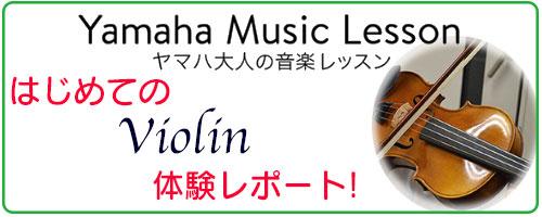 taiken_violin