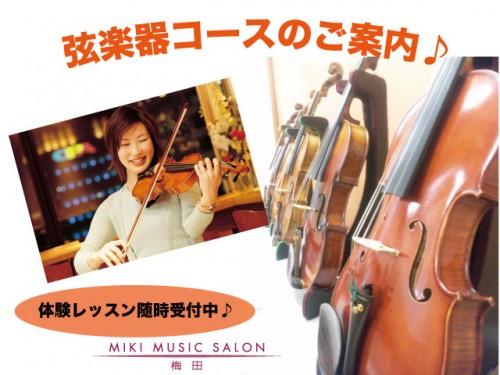 弦楽器コースの案内