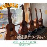 展示中の楽器の画像です